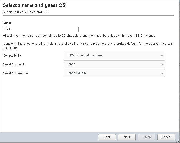 Select a name and guest OS