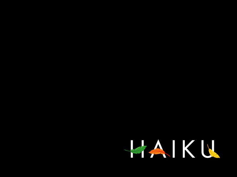 Haiku boot screen